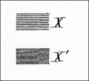 1881 X & X'