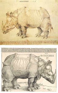 Dürer's_two Rhinoceroses