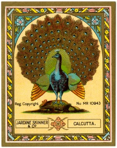 Peacock textile label UK