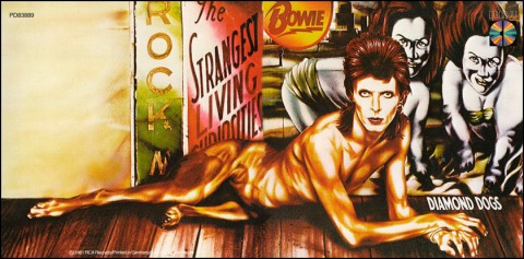Diamond Dogs 01