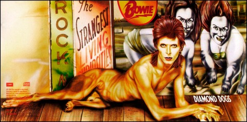 Diamond Dogs 02