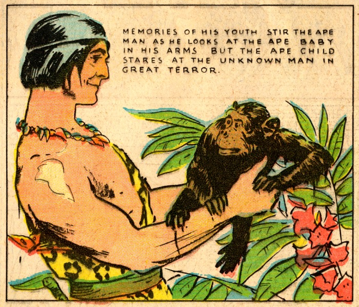 Tarzan_Foster_Jan 24 1932_Panel 7