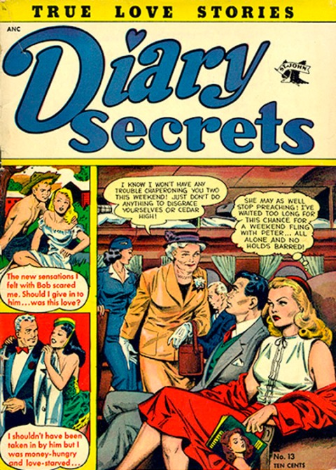 Diary Secrets 13 cover 72 dpi